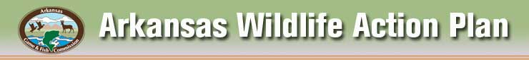 Designing A Future For Arkansas Wildlife